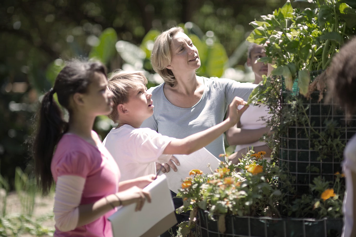 Going beyond Environmental Education: Planetary Health Learning in the Health Sector
