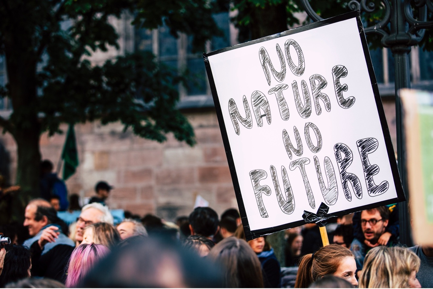 Climate action without bold biodiversity protection is an illusion of progress